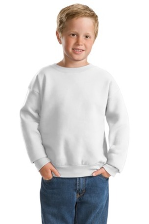 DISCONTINUED  Hanes ®   -  Youth EcoSmart ®  Crewneck Sweatshirt.  P360